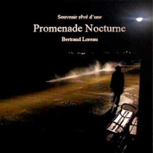 bertrand-loreau-promenade-nocturne